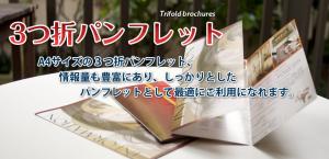 美容広告 エルデザイン 3つ折サロンパンフレットのご案内