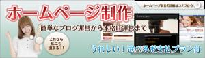 美容広告 エルデザイン ホームページ制作はこちら